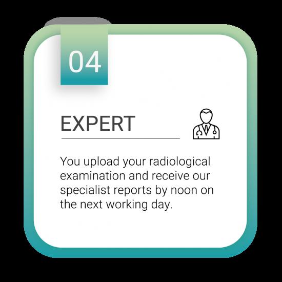 Expert_Zeichenfläche 1